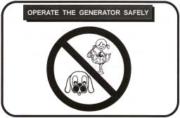 operate generator safely